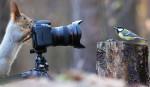 А как же фотографировать?